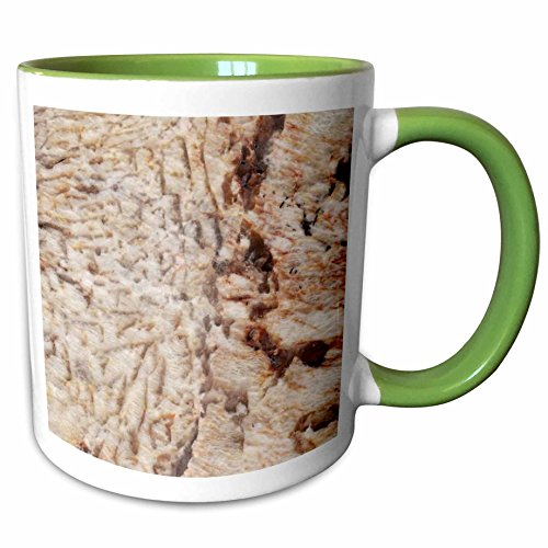 Two Tone Granite Green - 3dRose ToryAnne Collections Granite - Solarius granite print - 11oz Two-Tone Green Mug (mug_97965_7)
