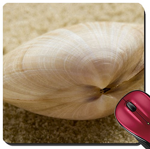 Liili Suqare Mousepad 8x8 Inch Mouse Pads/Mat IMAGE ID: 264836 Bivalve seashell on sand shallow depth of field