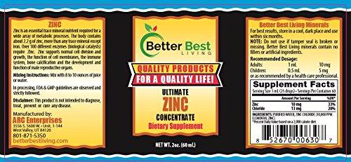 Amazon.com: Mejor Zinc iónico líquido concentrado de alta ...