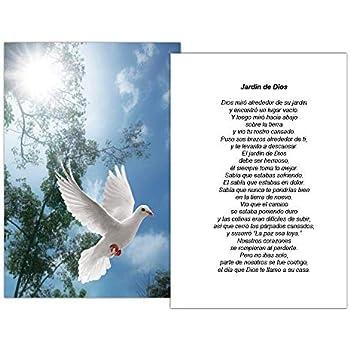 Targetas Funerales De Recordatorio (50 Cards) FPC1016ES Dove (Seleccione oracion deseada)