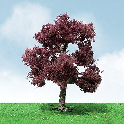 Copper Beech Tree - Copper Beech Trees - Pro Elite -- 1-3/4 - 2