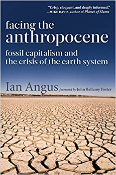 Book Facing the Anthropocene: Fossil Capitalism and the Crisis of the Earth System