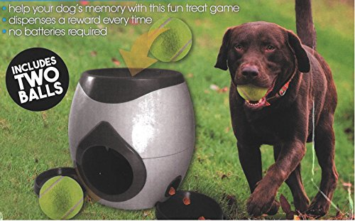 SmartChoice Fetch And Treat Dog Ball Game Two Balls Dog Interactive Game Treat Dispenser 3