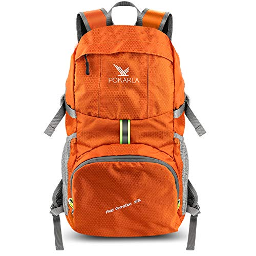 Buy lightweight day backpack