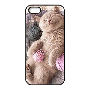 Custom Cover Case with Hard Shell Protection for Iphone 5,5S case with Cute Kitten Cat lxa#439753 by mcsharks