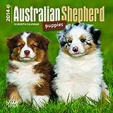 Australian Shepherd Puppies 2014 18th-Month Calendar