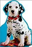 102 Dalmatians: Take Me Home! (Disney's 102 Dalmatians)