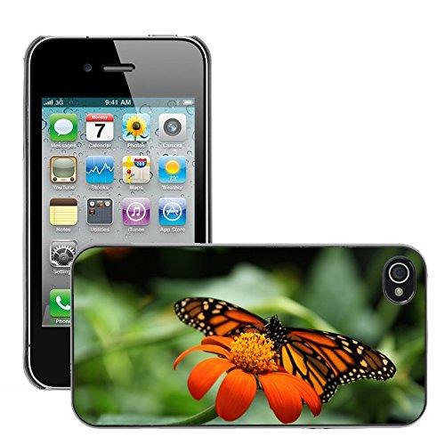 Bild Hart Handy Schwarz Schutz Case Cover Schale Etui // M00135045 Tier Schöne Monarch Schmetterling // Apple iPhone 4 4S 4G