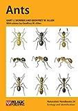 Ants (Naturalists' Handbook)