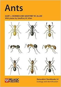 Ants (Naturalists' Handbooks)