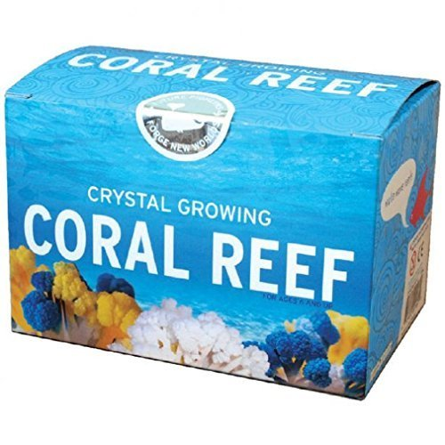 - Crystal Growing Coral Reef - Science Kit by Terraforming Kit