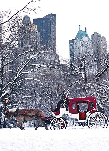 Horse Carriage in Central Park Snow. New York Christmas Cards Boxed Set of 12 Holiday Cards And 12 Envelopes. Made In USA