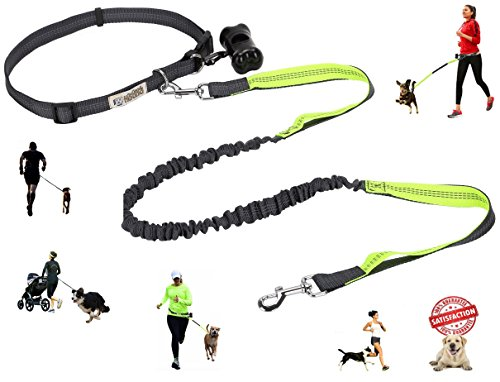 The Good Hound Hands Free Dog Leash for Running with Adjustable Waist Belt for Walking, Jogging, Hiking, Training - Retractable Reflective Bungee Lead for Large and Small Dogs w/FREE Poop Bag Holder