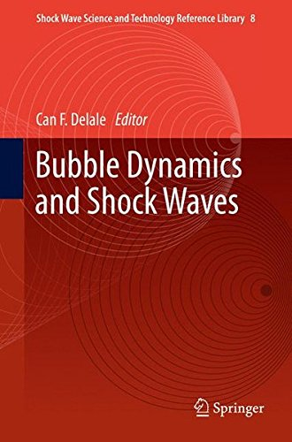 Bubble Dynamics and Shock Waves (Shock Wave Science and Technology Reference Library)