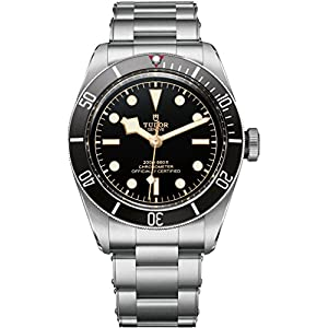 51NQgPgyXLL. SS300  - Tudor Heritage Black Bay 79230N Men's Watch