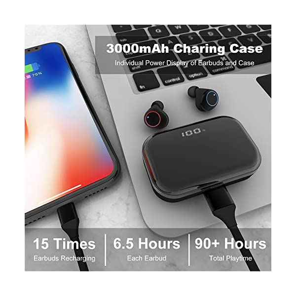 U-Rok earbuds and stylish charging case