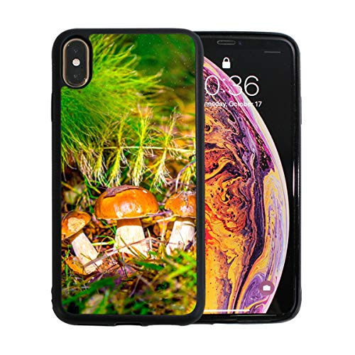 Mushrooms Growing in The Forest Apple Phone Xs Max Case Screen Protector TPU Hard Cover with Thin Shockproof Bumper Protective Case for Apple Phone Xs Max 6.5 Inch