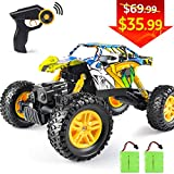 DOUBLE E RC Car Remote Control Monster Truck 1/18 4WD Off Road Rock Crawler with 2 Batteries Dual Motors 2.4GHZ Transmitter