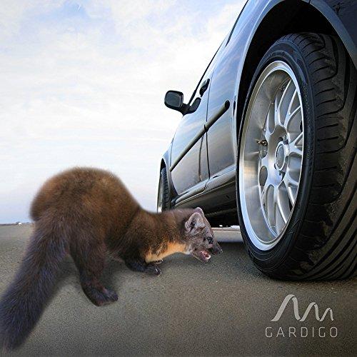 Vegas Marten Repellent,Marten Deterrent Free Car,Mouse Repeller Ultrasonic Pest Control Mice Repellent Under Hood No Power Connection Keep Scab Away from Your Car House Barn or Garden Arbor Garage