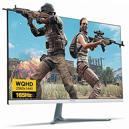 NEWSYNC 27 inch Real 165Hz (DP) 144Hz (HDMI) 1ms 1440p WQHD LED Gaming Monitor (AMD FreeSync, Crosshair Target, Flicker-Free, Low Blue Light, Zero Bezel) DisplayPort, HDMI, DVI (B27Q165 HDR Shooting)