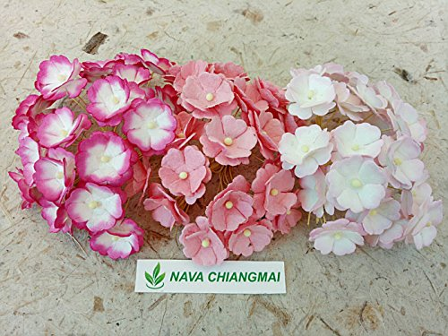 NAVA CHIANGMAI 60 pcs mixed Pink Two Layer Mulberry Paper Flower 20 mm scrapbooking wedding doll house supplies card. (Purse Pinks Corsage)