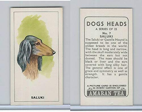 (A0-0 Amaran Tea, Dogs Heads, 1965, 7 Saluki, Gazelle Hound)
