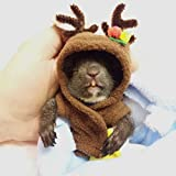 Alfie Pet by Petoga Couture - Dylan Elk Costume for Small Animals like Dwarf Hamster and Mouse