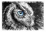 Startonight Canvas Wall Art Black and White Abstract Bird Eye, Dual View Surprise Artwork Modern Framed Ready to Hang Wall Art 100% Original Art Painting 23.62 X 35.43 inch