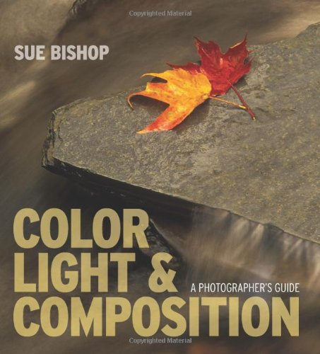 Download Color, Light & Composition: A Photographer's Guide ebook