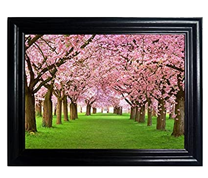 SEASONS FRAMED Wall Art  Lenticular Technology Causes The Artwork To  Flip MULTIPLE PICTURES