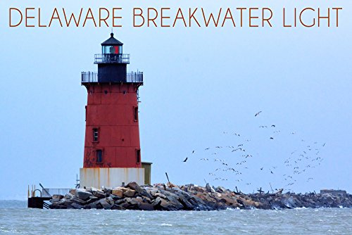 Lewes, Delaware - Cape Henlopen Lighthouse Day (16x24 SIGNED Print Master Giclee Print w/Certificate of Authenticity - Wall Decor Travel Poster)