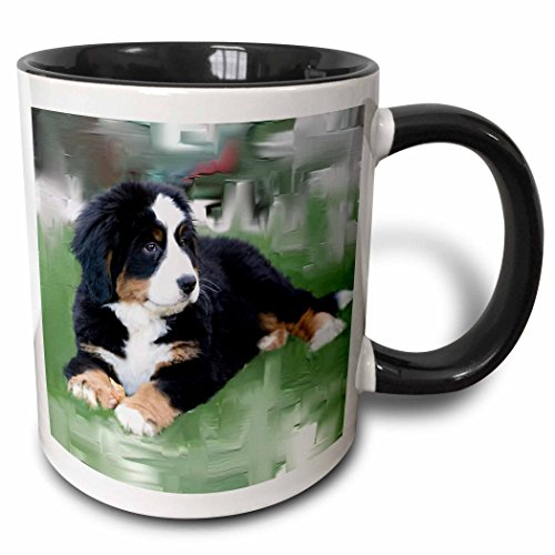 "3dRose mug_4038_4""Bernese Mountain Dog Two Tone black"" Mug, 11 oz, Black/White"