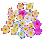 entertainment-moment-20Pcs-Plumeria-Hawaiian-Foam-Frangipani-Flower-Artificial-Silk-Fake-Egg-Flower-for-Wedding-Party-DecorationH027Cm