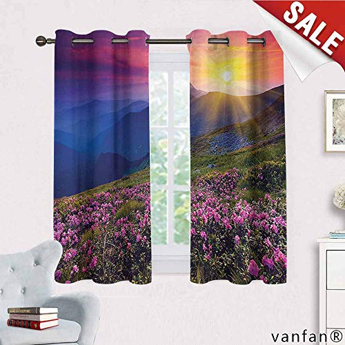 """Nature Landscape Decor Collection curtain blackout liner,Magical Fairy Horizon with Flowers on the Valley and Mountain Mysterious Photo Deco for Bedroom, Nursery, Living Room,Multi W63"""" x L72"""""""