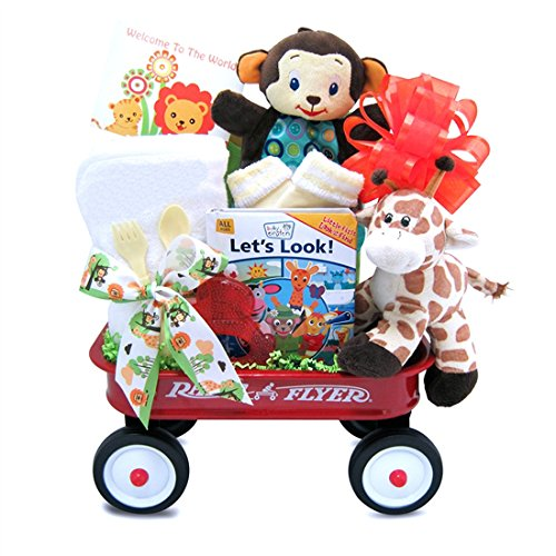 Wild Wilderness Baby Einstein Gift Basket by Cashmere Bunny