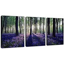 "Canvas Wall Art Purple Lavender in Forest Sunshine Painting Prints - 3 Pieces 12"" x 16"" Modern Morning Woods Big Tree Landscape Contemporary Picture for Home Decoration Office Wall Decor Ready to Hang"