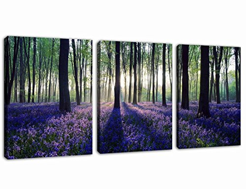 Canvas Wall Art Purple Lavender in Forest Sunshine Painting