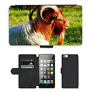 CARD POCKET BOOK CASE PU LEATHER CASE // M00103963 Cabra de Billy Goat Horns Animal // Apple iPhone 5 5S 5G