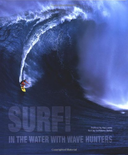 Surf!: In the Water with Wave Hunters