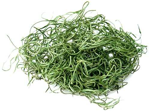 SuperMoss (26912) Spanish Moss Preserved, Grass, 8oz (200 cubic inch) ()