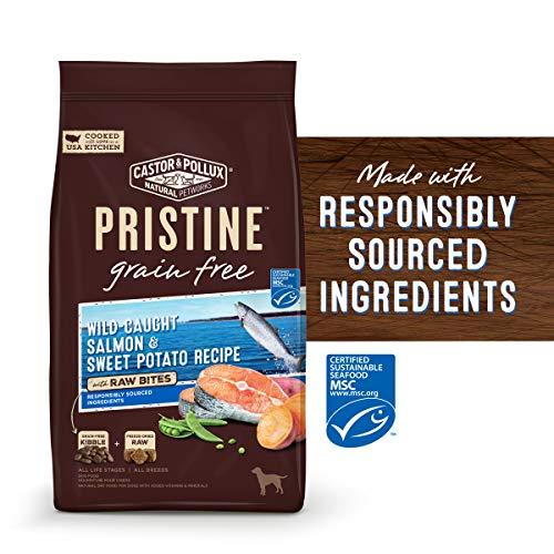 Pristine Grain Free Wild Caught-Salmon & Sweet Potato Recipe With Raw Bites Dry Dog Food, 18 Lb
