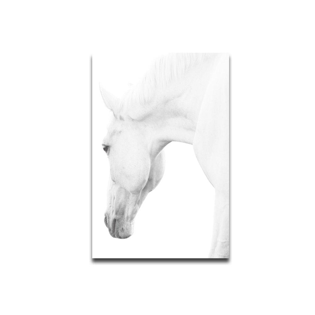 Babysbreath17 Cheval Tête d'un animal de style Art mur Peinture à l'huile sur toile Non encadrée Accrochage Chambre Salon huile Dessin Poster 30x45cm