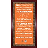 MLB Baltimore Orioles Subway Sign Wall Art with Authentic Dirt from Oriole Park at Camden Yards, 16x32-Inch