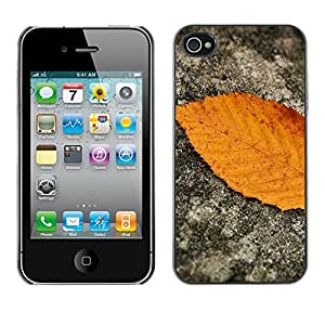 SHIMIN CAO- Dise?o Caso duro de la cubierta Shell protector FOR Apple iPhone 4 4S 4G- Leaves