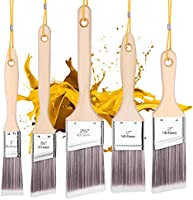 5Pk Paint Brushes with 5 Portable Ropes,squish Paint Brush Set for Wall,Paint Brushes Set, Treated Wood Handle,...