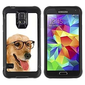 Suave TPU Caso Carcasa de Caucho Funda para Samsung Galaxy S5 SM-G900 / Labrador Retriever Golden Glasses Dog / STRONG
