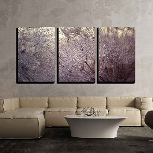 wall26 - 3 Piece Canvas Wall Art - Abstract Macro Photo with Water Drops. Dandelion Seed.Artistic Background for Desktop. - Modern Home Decor Stretched and Framed Ready to Hang - - Abstract Artistic