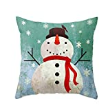 Decorative Pillow Cover - Christmas Snowman Cushion Cover Case Pillow Custom Zippered Square Pillowcase 18x18 (Snowman)