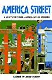 img - for America Street: A Multicultural Anthology of Stories book / textbook / text book