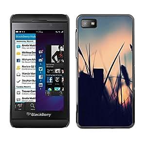 EJOY---Cubierta de la caja de protección la piel dura para el / Blackberry Z10 / --El campo de verano